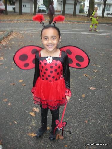 Adorable-Ladybug!