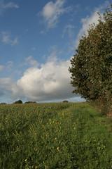 Chemin des nuages