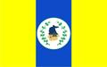Bandeira da cidade de Itapipoca