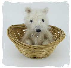 Wally in Basket