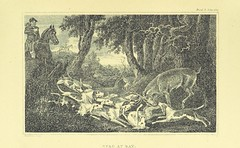 """British Library digitised image from page 102 of """"Somerville's Chase"""""""