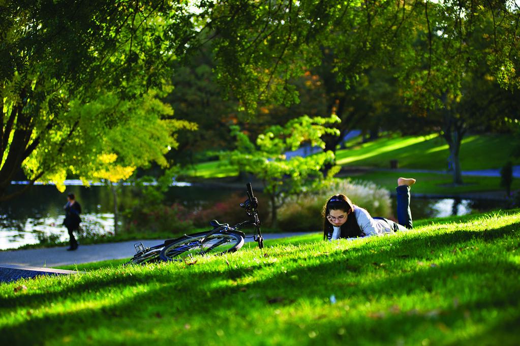 20111114_arboretum_033