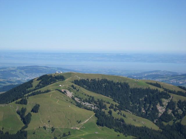 Blick auf den Kronberg (1663 m), dahinter der Bodensee