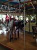 Carousel at Madison Zoo