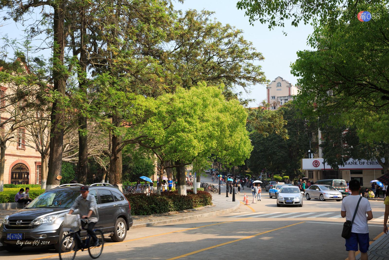 廈門大學 (3) 街拍廈大