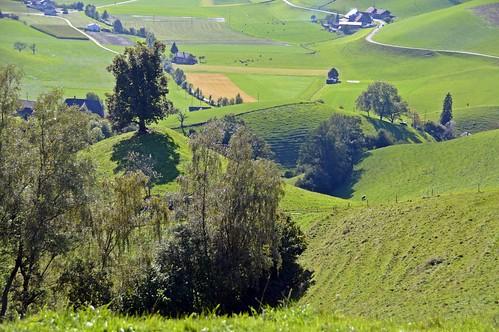 Emmental, heisst Hügel, und kleine Landwirtschaftsbetriebe