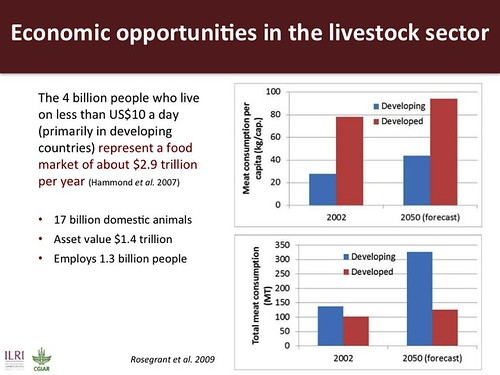 a description of the international livestock research institute ilri Today's science and development issues are complex, often involving multiple  international players, yet demanding local solutions increasingly, many acknowl.