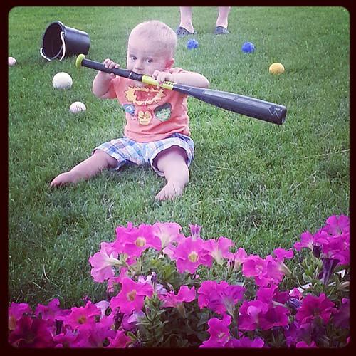 Front yard baseball bat eating practice
