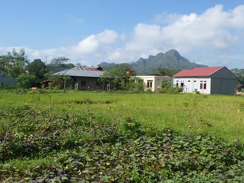 Sulawesi13-Rantepoao (13)