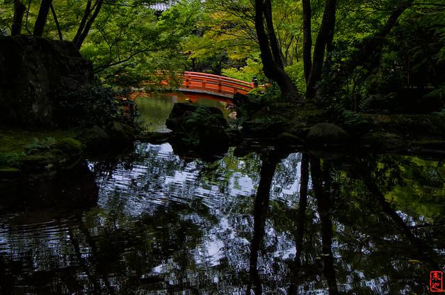 「光」 醍醐寺 - 京都