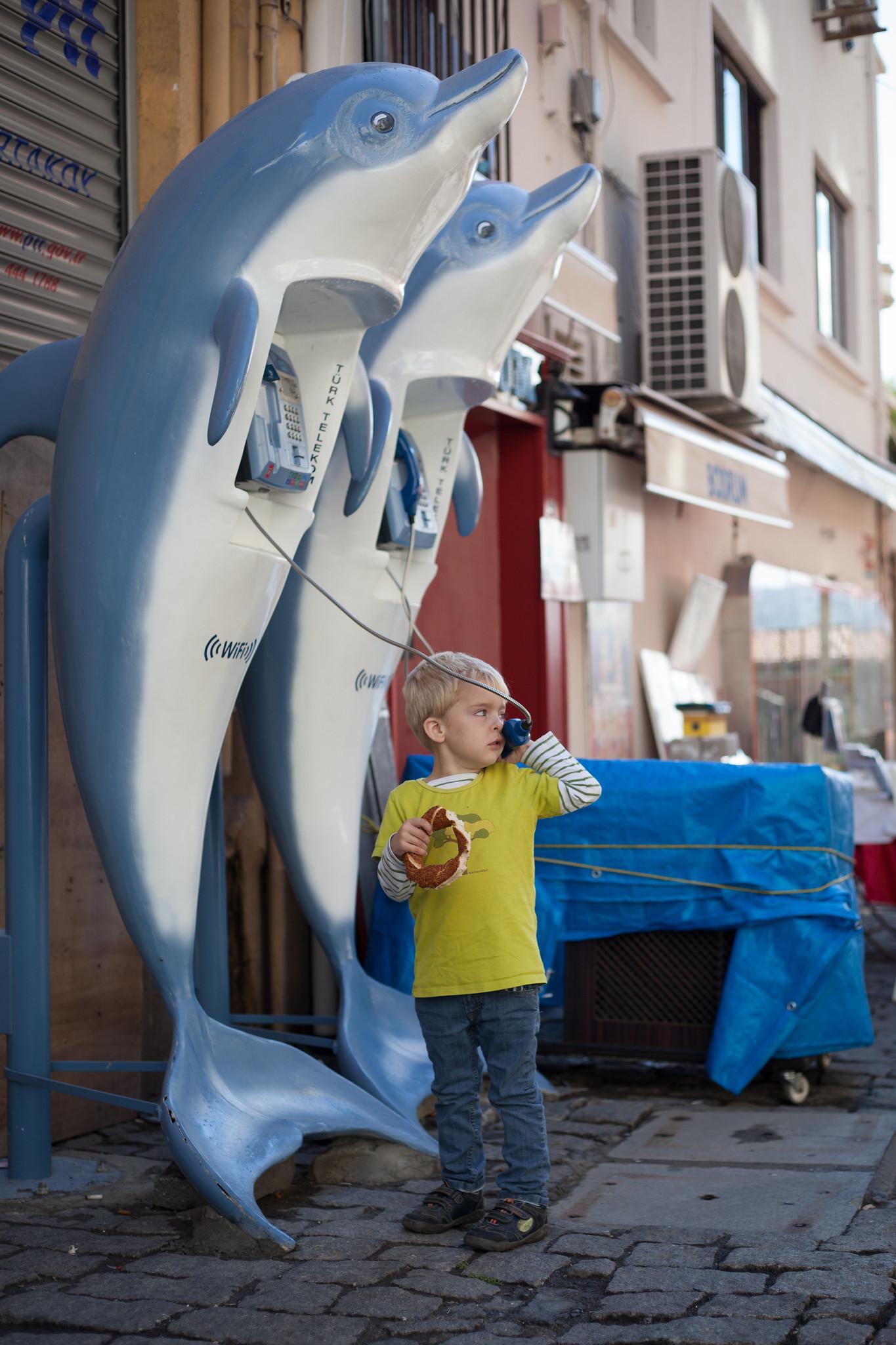 Dolphin Phones.