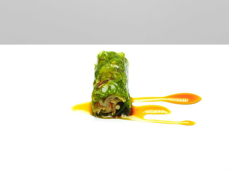 nems végétale