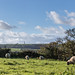 Rural Panorama - Bembridge by s0ulsurfing