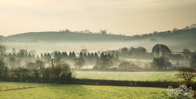 Ashburton Down in Mist