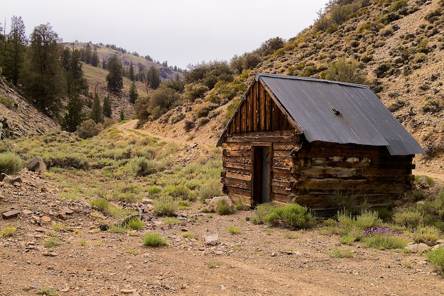 Inyo National Forest, White Mountains, Wyman Creek Road, Railroad-tie Cabin