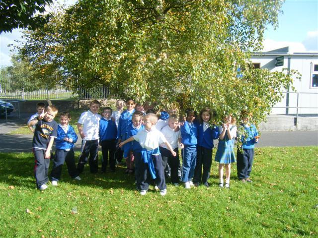 Tree day 2009-2010