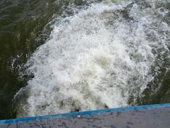 IMG_20121007_105554
