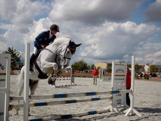 Showjumping_white_horse