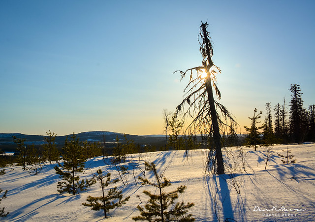 An Arctic Adventure in Swedish Lapland - Sunset on the Snow-covered hill