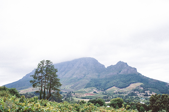 Suzette and Sebe wedding Clouds Estate Stellenbosch South Africa shot by dna photographers 07