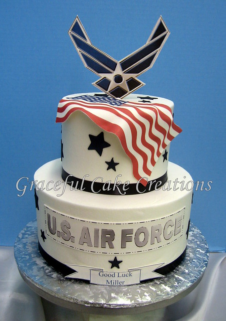 U s air force cake explore graceful cake creations for Air force cakes decoration