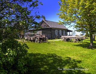 Homesteader's Log Cabin