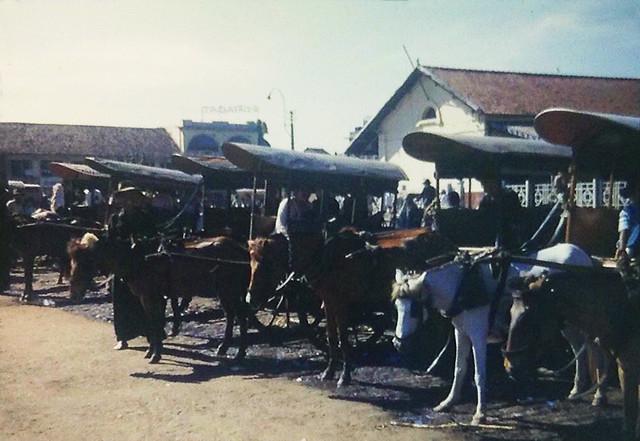 SAIGON 1953 - Horse Carts At Marketplace - Bến xe thổ mộ chợ Saigon