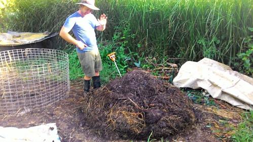 第八天的堆肥已經轉為漂亮的黑褐色。攝影:林貞妤。