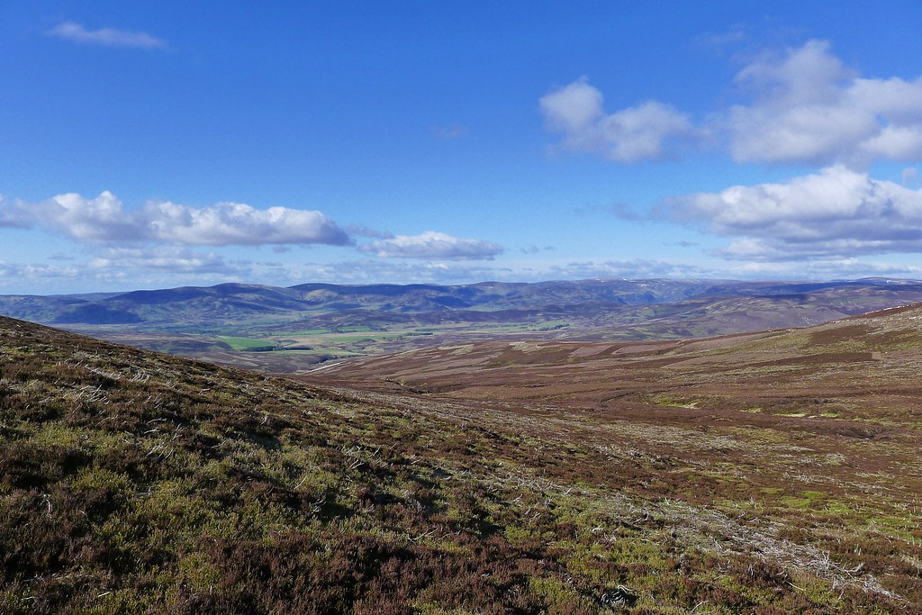 Above the Fungle and Glen Esk