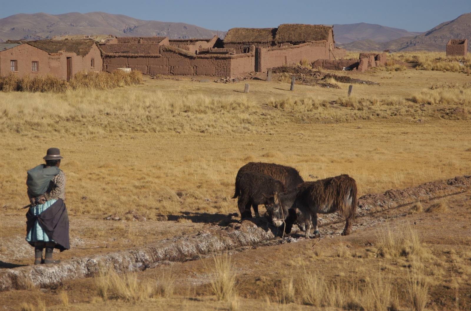 Paisaje en el altiplano boliviano. Autor, A. Davey