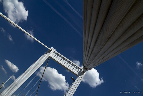 Bridge by Zdenek Papes