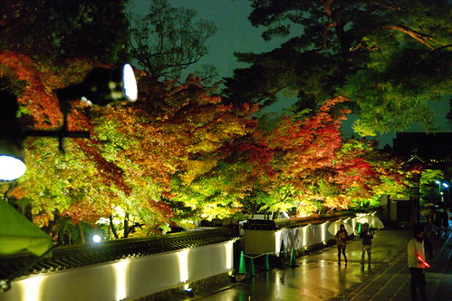 【写真】2012 紅葉 : 永観堂/2020-05-30/IMGP6285