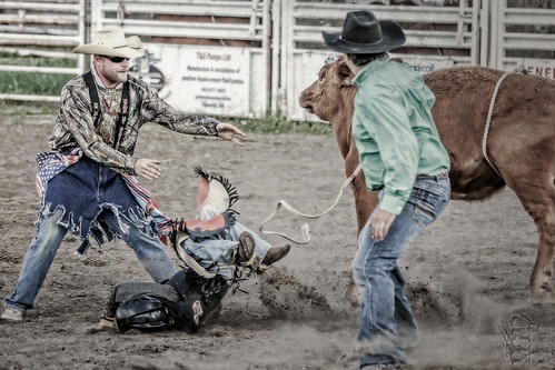 Gooseberry Lake : 4-H Rodeo 2013 : You. Shall. Not. PASS!