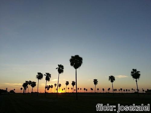 sunset nature bike texas palmtrees trail mission flickrandroidapp:filter=none missionhikeandbiketrailonbentsen