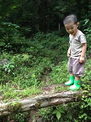とらちゃんと帰省 2013/8