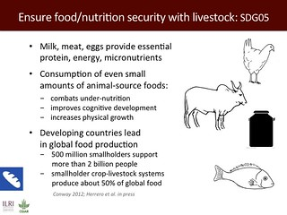 Ensure food/nutrition security with livestock