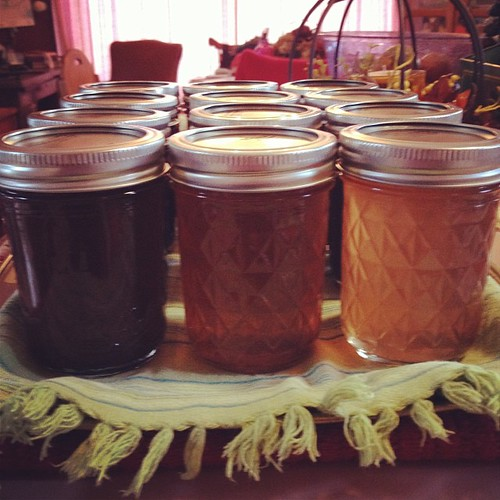 Deep, dark tangy apple butter and sweet apple jelly from the same batch of apples. #canning #karenjeannecreations  #homemade #apples