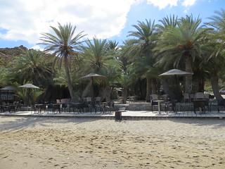 Image de Palm Beach Vai. vai palmtree crete 2013 βάι cretandatepalm naturalpalmforest