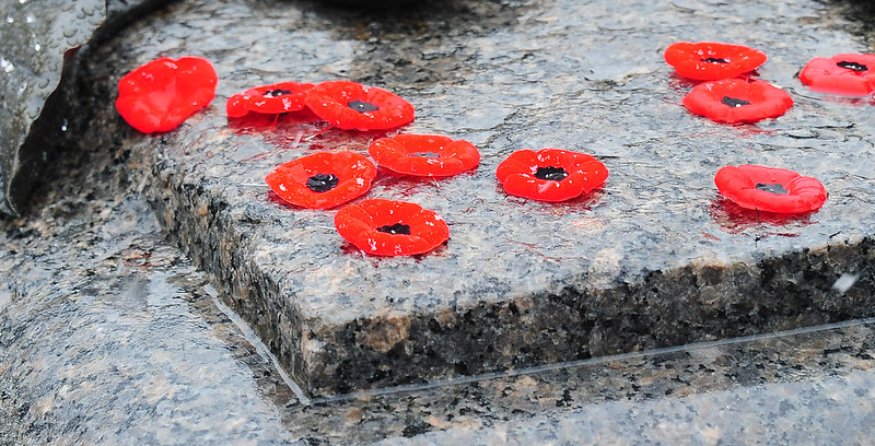 Remembrance Day Poppies on a cenotaph