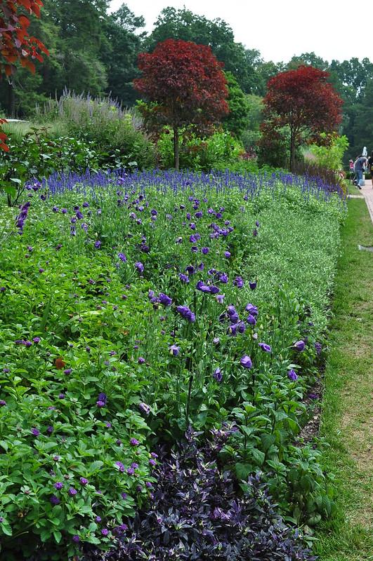 Flower Garden Walk (6)