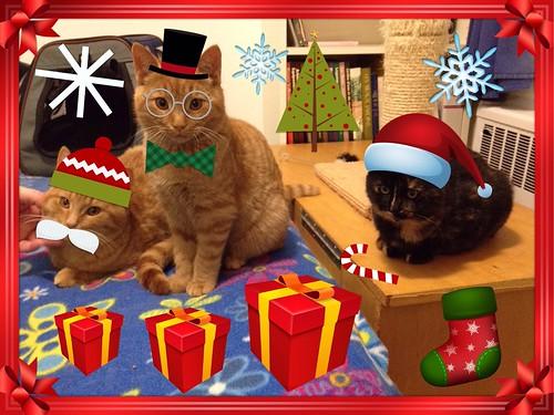 Joyeux Noel / Merry Christmas