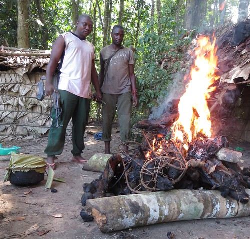 one of two piles of bushmeat burned in poachers camp