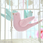 Felt bird in birdcage