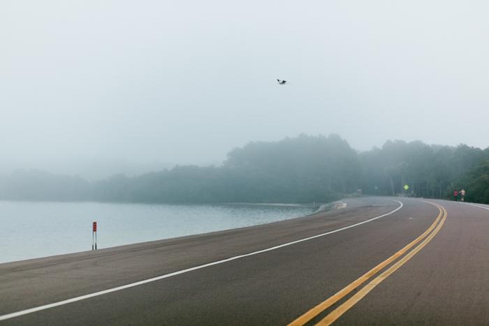 fog (1 of 8)
