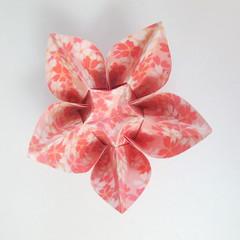 สอนวิธีการพับกระดาษเป็นดอกมะเฟือง (Origami Carambola) 028