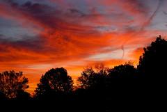 The Sunrises First in Cordova