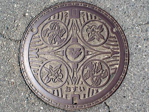 Higashihiroshima Hiroshima, manhole cover (広島県東広島市のマンホール)