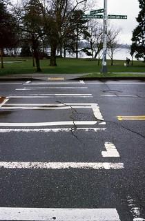 Day 056/365 - Greenlake Crosswalk