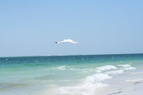Florida May 2014 (13)