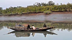 Fishermen At Sundarban, West Bengal, India